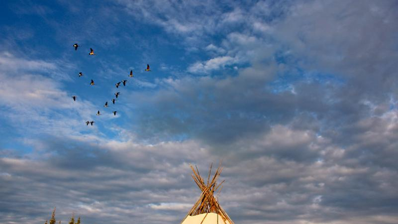 Geese flying above a teepee