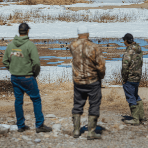 3 hunters looking at goose decoys