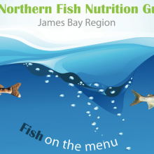 2013 Northern Fish Nutrition Guide